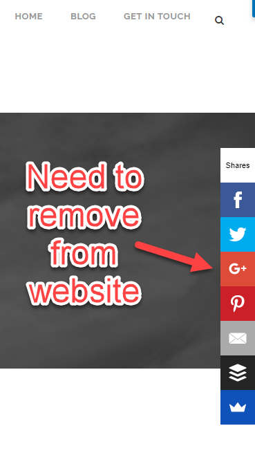 remove google plus icon